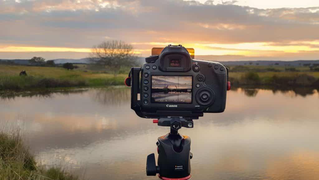 beste spiegelreflexcamera voor natuur foto