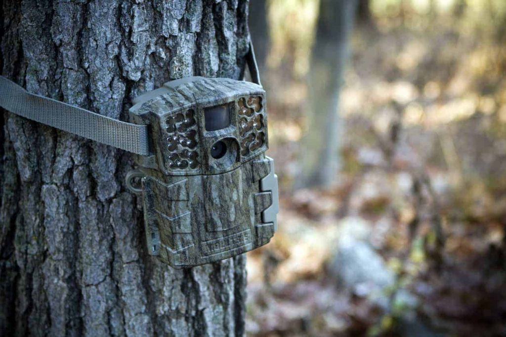 timelapse camera in het bos in de natuur